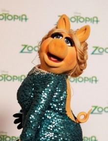 Warszawa i okolice - Przewodnik